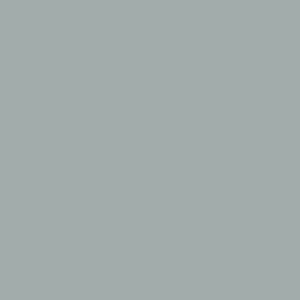 Camdenton Lakers - Long Sleeve Fan Favorite Tee Design