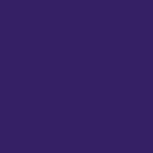 Camdenton Wrestling - Heavy Blend Hooded Sweatshirt Design