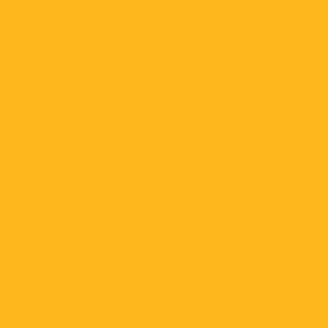 Camdenton Lakers Basketball - Heavy Cotton T-Shirt Design